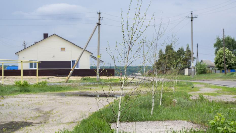 В Лискинском районе к 250-летию села Дракино благоустроят сквер
