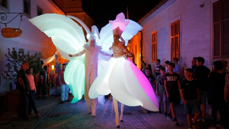 ВВоронеже парад уличных театров впервый раз пройдет ночью