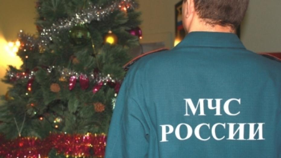 Нановогодних каникулах вВоронежской области случилось 50 пожаров