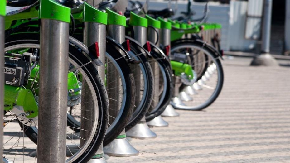 В Воронежской области ребенок упал с велосипеда под колеса иномарки