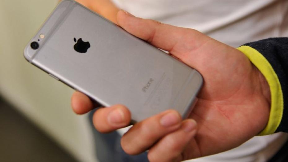 Интернет-мошенниками по продаже iPhone оказались 2 воронежца