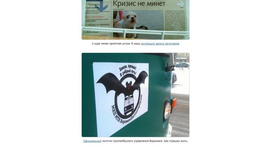 Логотип воронежских троллейбусов с летучей мышью попал в подборку «Маразмы месяца» от AdMe