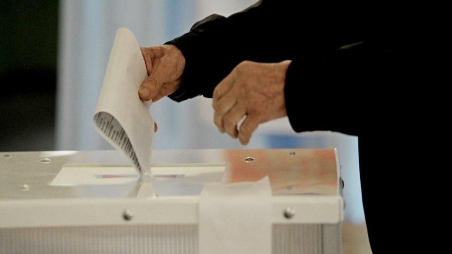 Воронежские единороссы отрепетировали осенние выборы