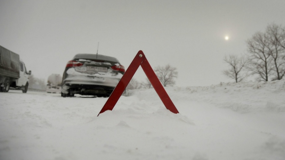 Федеральные трассы в Воронежской области очистят от снега 130 машин