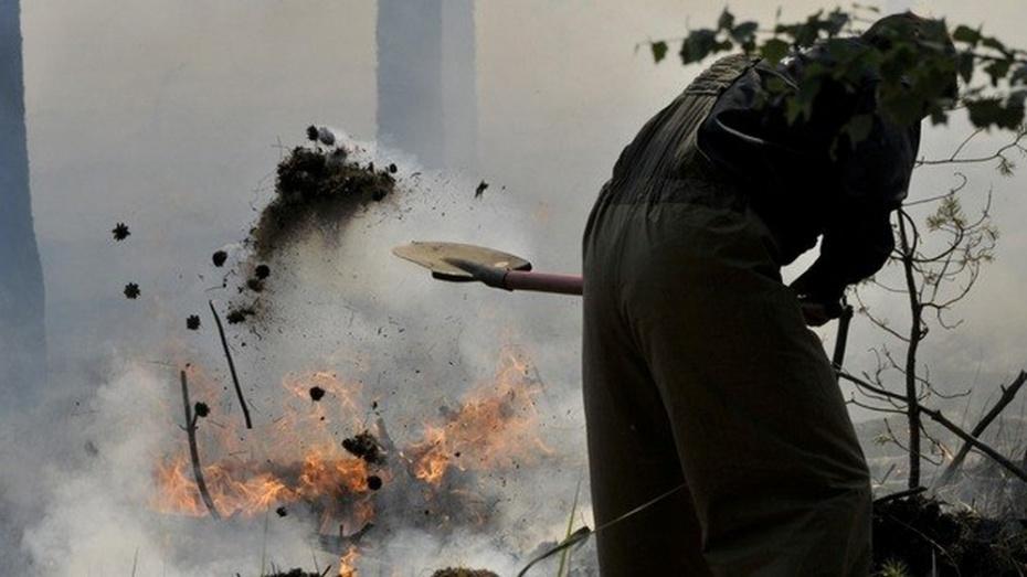 Под Рамонью возобновились ландшафтные пожары