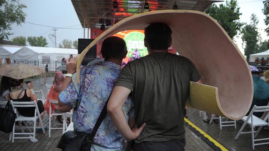 Синоптики: в выходные в Воронеж придет гроза