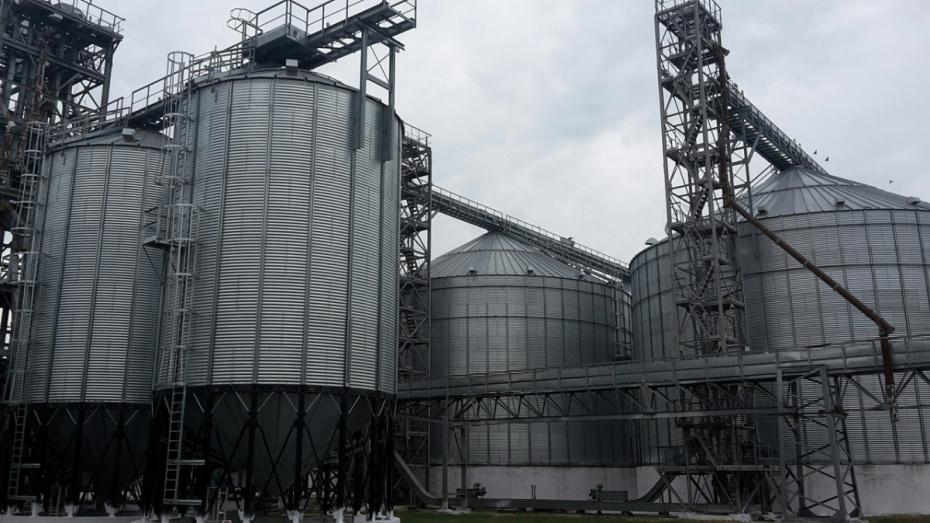 На комбикормовом заводе в Воронежской области решили создать большую откормочную площадку