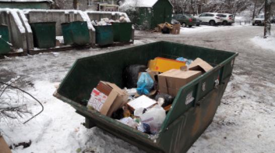 Воронежцы будут платить за вывоз мусора в зависимости от площади жилья