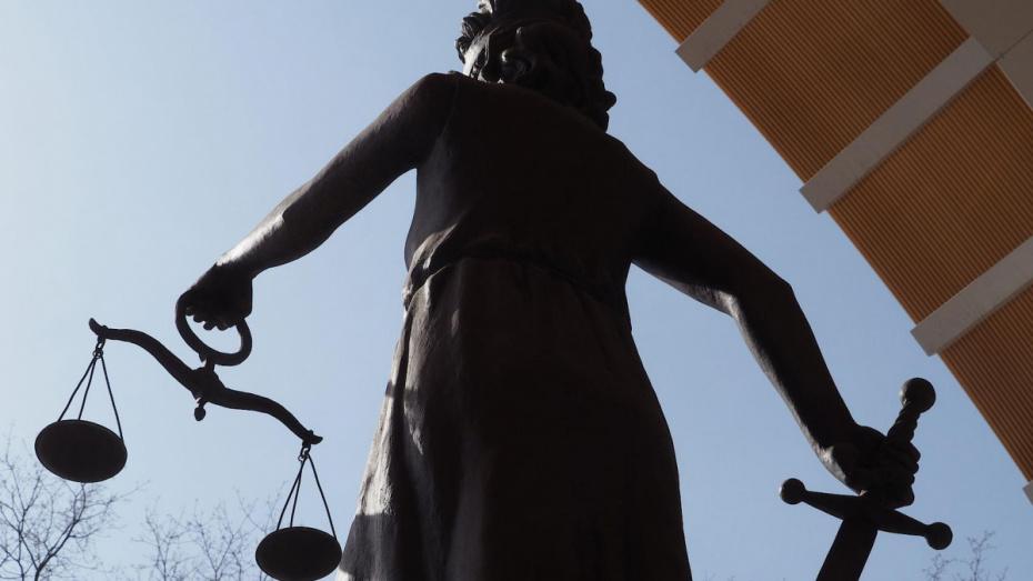 Путин назначил 10 воронежских судей
