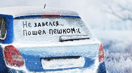 kto-luchshe-vseh-podgotovlen-k-zime
