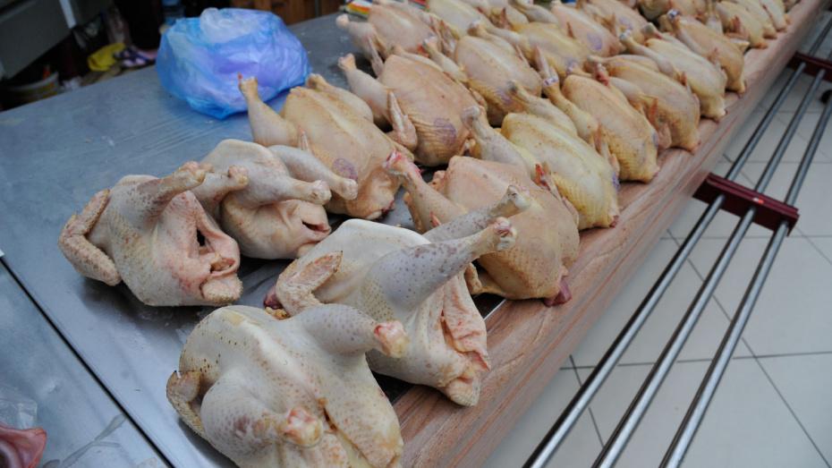 В Воронежской области птицеводческая компания задолжала работникам 3 млн рублей
