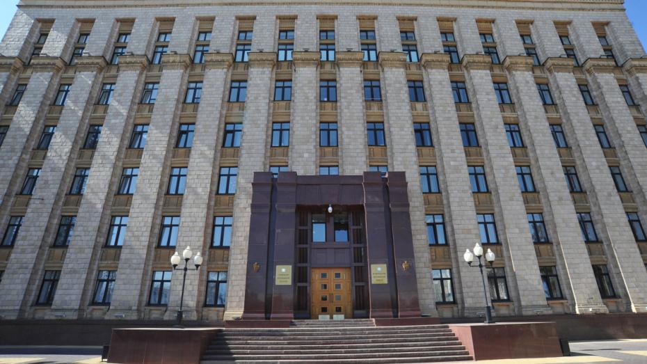 Центр эффективности правительства Воронежской области подвел итоги за 1-й год работы