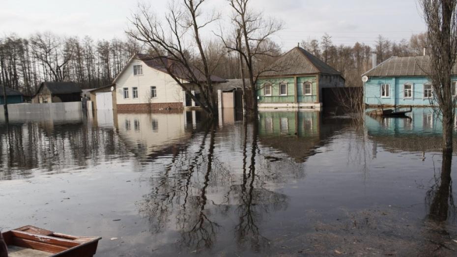 Уровень воды вреках Воронежской области продолжает понижаться