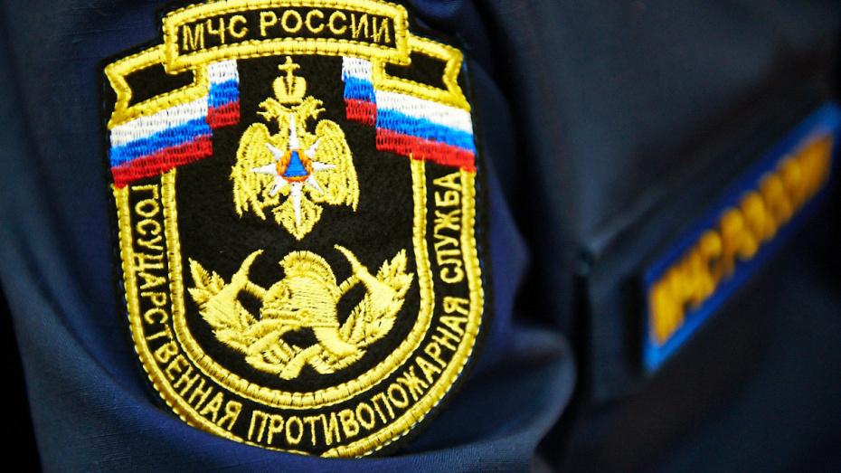 При пожаре в Воронежской области погиб 40-летний мужчина