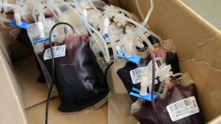 Под Воронежем для спасения жизни многодетной матери перелили 7,5 литра крови