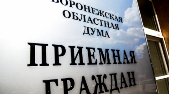 С начала года депутаты Воронежской областной Думы рассмотрели более 800 обращений