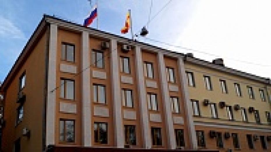 Бюджет Воронежа на текущий год хотят увеличить на 0,5 млрд рублей