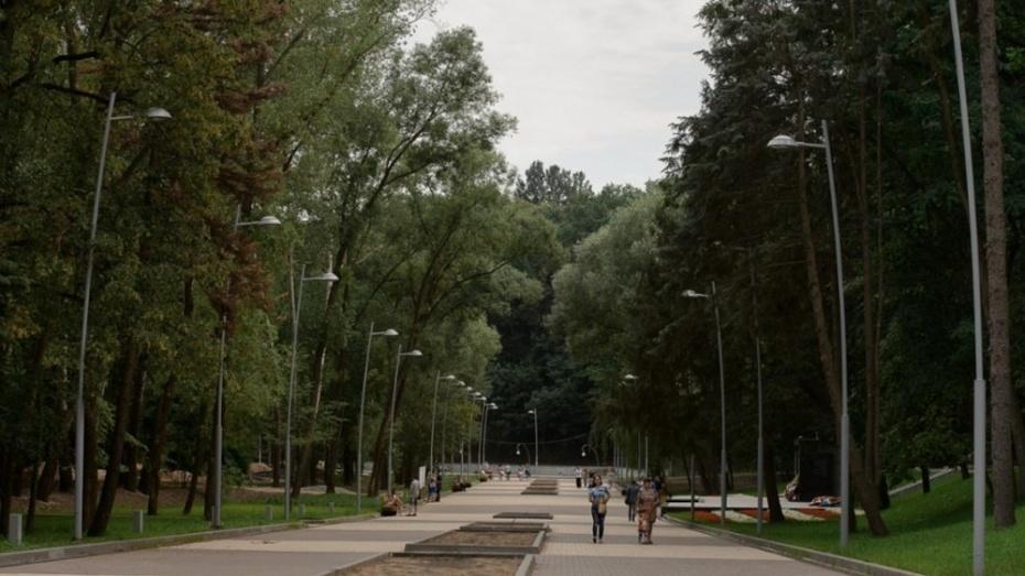 Велопрокат в Воронежском центральном парке появится в сентябре