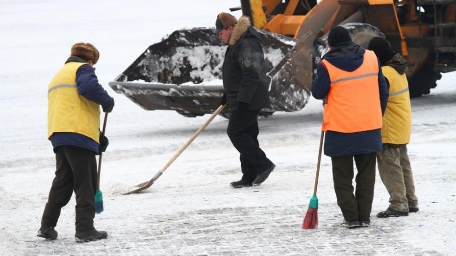 Воронежские коммунальщики отчитались об уборке улиц «часами» и «метрами»