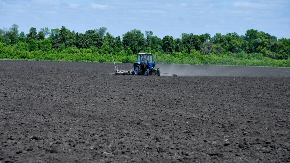 Воронежская область получит 139 млн рублей на закупку дизтоплива для аграриев