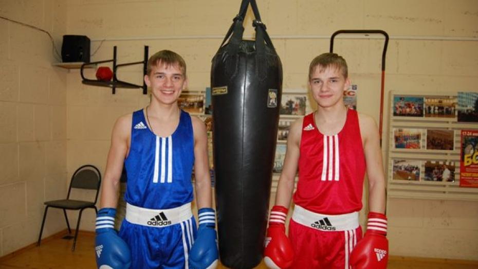 Россошанские боксеры победили на областном турнире по боксу