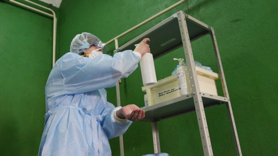В Воронежской области за сутки скончались 2 пациента с COVID-19