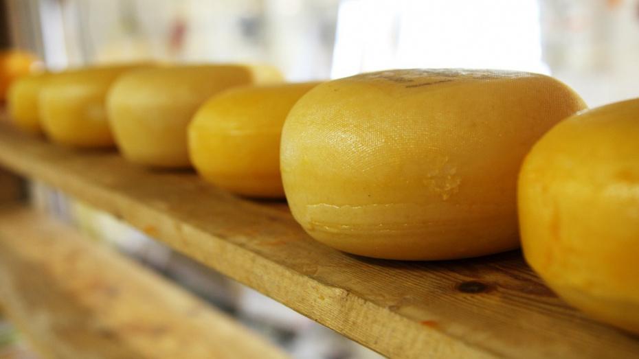 На кухне воронежского госпиталя нашли поддельный сыр