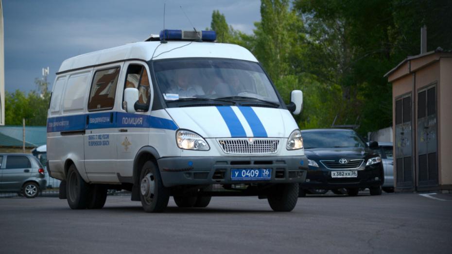 В Воронежской области ищут водителя, сбившего пешехода